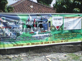 DSC_0000083