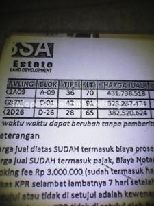 DSC_0000271