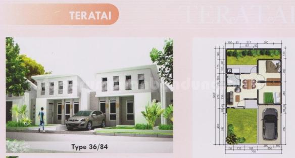tipetearatai36_84