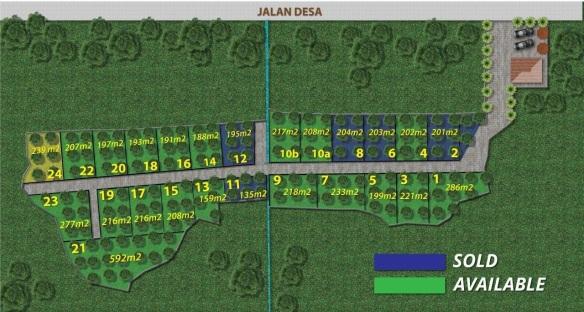 Site Plan Kebun Durian Cigalontang Investasi